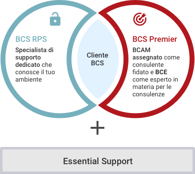 BCS Support Offerings